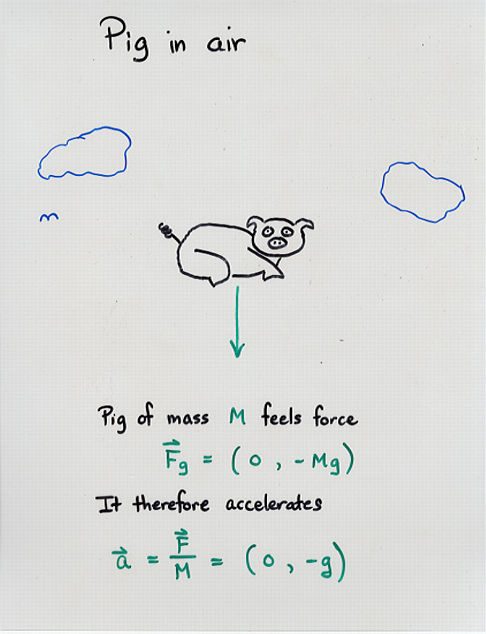 Freebody Diagrams and Newton's Third Law