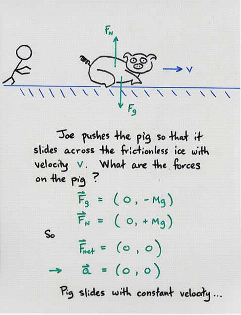 Freebody Diagrams And Newton S Third Law